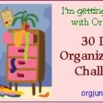 And so the 30 Day Organizational Challenge begins!