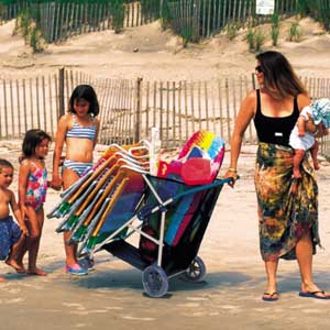 Beach Carts At Walmart http://orgjunkie.com/2008/06/product-highlight-beach-cart.html