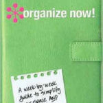This month's organizing challenge and my hairspray friend