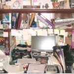 Summer Organizer Spotlight ~ Sue Anderson