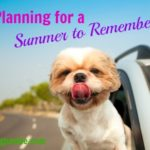 Planning for a Summer to Remember