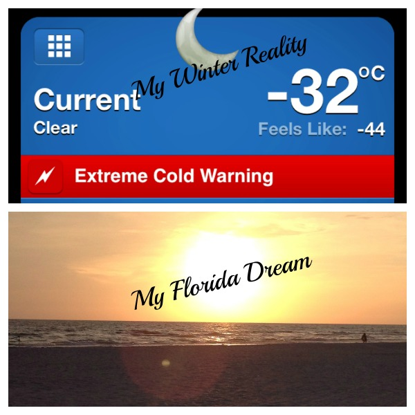 Winter Reality
