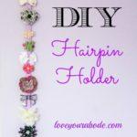 DIY Hairpin Organizer