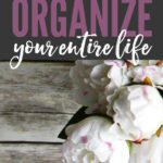 Organize-this-and-organize-your-entire-life
