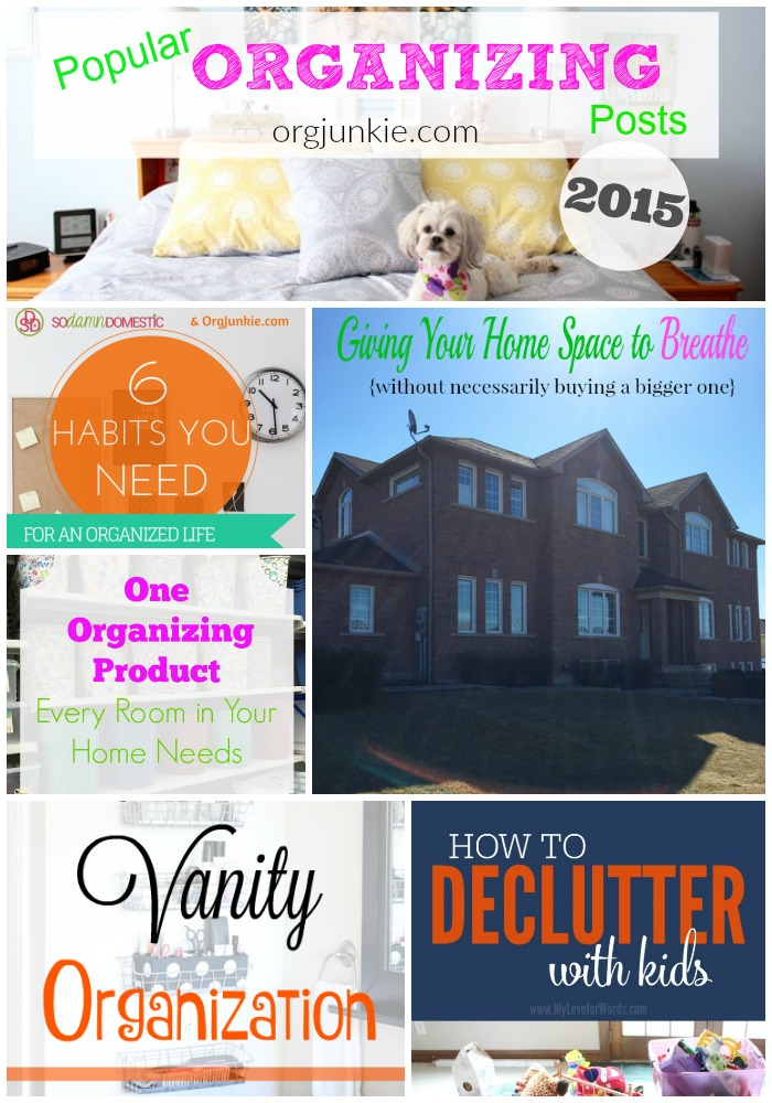 Popular Organizing Posts of 2015 at I'm an Organizing Junkie blog
