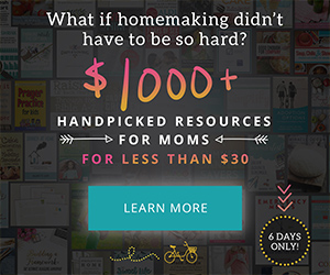93 Homemaking Ebook Bundle Resources